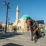 Horse and Mosque, Akko, Israel